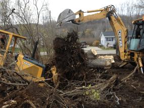 Stump removal 2