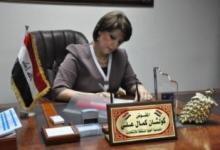 صورة المفوضية العليا تدعو وزراة الخارجية تسهيل مهمة المراقبين الدوليين في الانتخابات