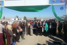 صورة وزارة الزراعة تفتتح اول قرية عصرية في الديوانية لتقليل التصحر في العراق