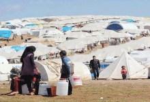 صورة الهجرة إجلاء ونقل 1400 نازح عراقي من مخيم الهول في الحسكة السورية