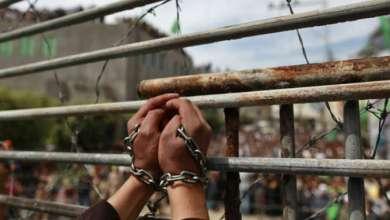 صورة اسرى فلسطين في سجون معتقلات الاحتلال يتخطون حاجز الشهر بلا طعام