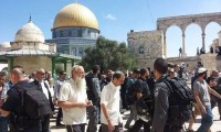 مجموعات من المستوطنين يقتحمون باحات المسجد الأقصى