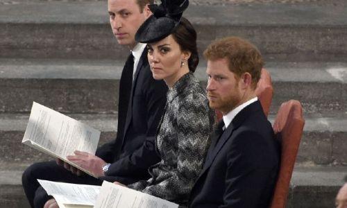 الأمير وليام يكافح لإخفاء ضحكته وميغان ماركل تصحّح خطأً ارتكبته من جديد!