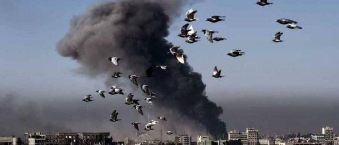 """أستراليا تعترف بضربتها """"الخاطئة"""" في العراق بعد عام من تنفيذها!"""