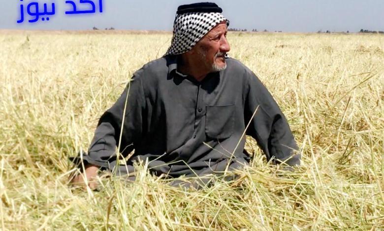 صورة اطلاق المستحقات المالية للفلاحين والمزارعين