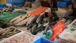【函館グルメ】函館の市場は朝市より自由市場がおすすめ!