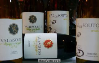 Bodegas Val de Souto Guía de Vinos Xtreme 2015 © akataVino (7)