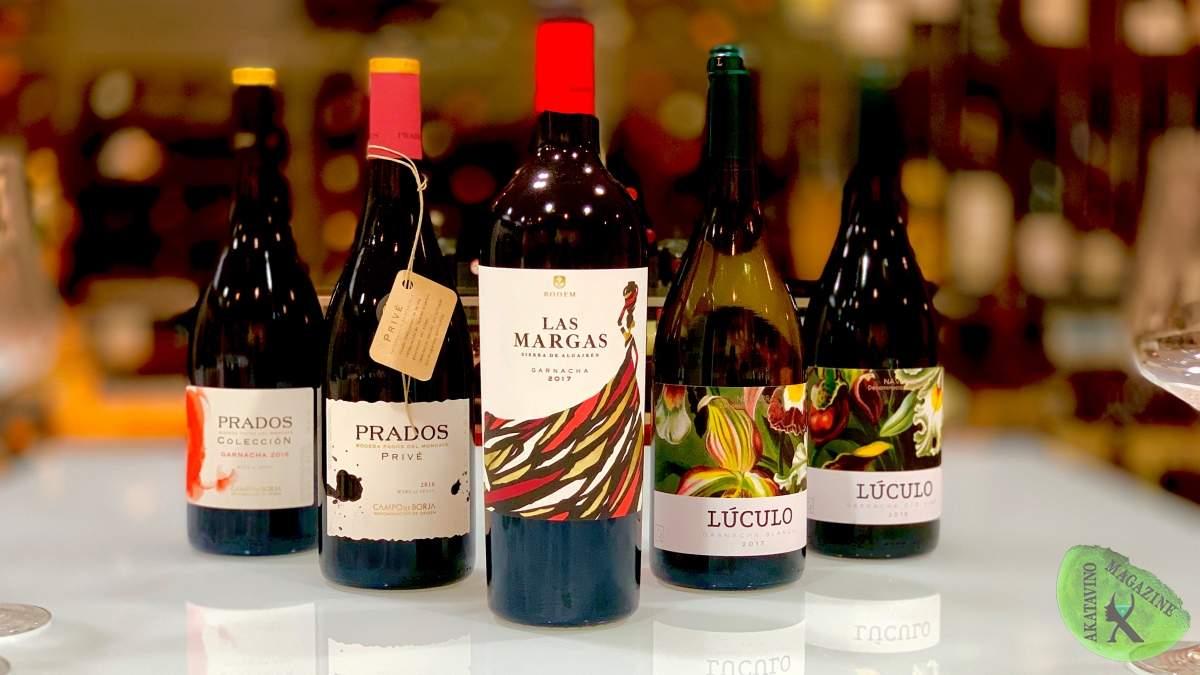 Tocando paisajes y terruños con Axial Vinos. Elaboraciones Premium y limitadas | AkataVino Magazine
