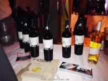 Evento ASM I Salon de Vinos 2014.12.01 (163)