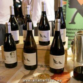 Evento ASM I Salon de Vinos 2014.12.01 (211)