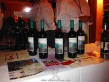 Evento ASM I Salon de Vinos 2014.12.01 (41)