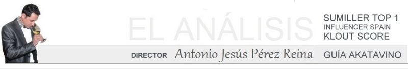Faldon Antonio Jesus Perez Reina El analisis