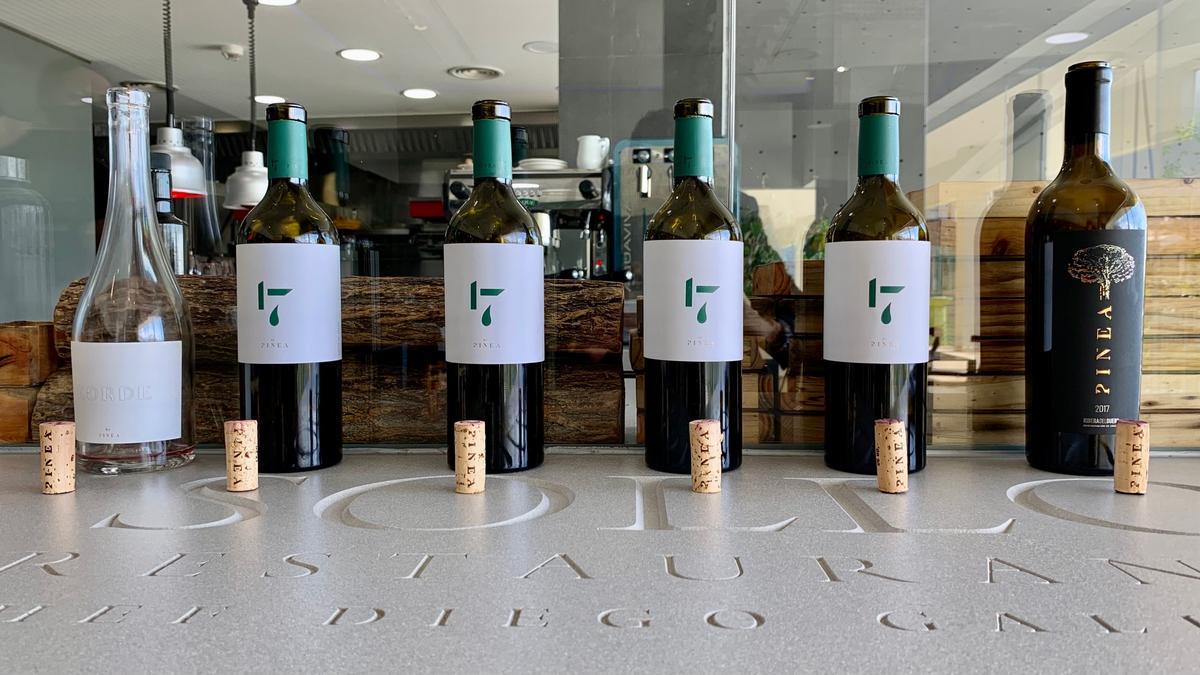 Pinea Wine un proyecto que marcará tendencia. Presentación con estrella: Restaurante Sollo