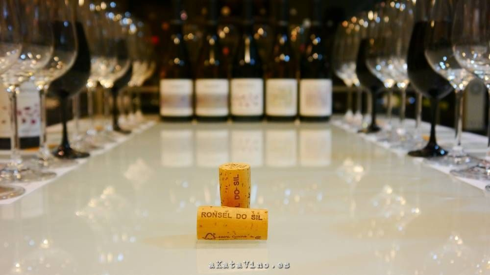 Ronsel do Sil Guia de Vinos Xtreme 2015 © akatavino.es (39)