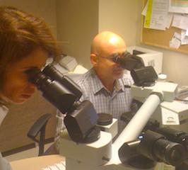 mediastinoskopi; akciğer kanseri teşhisinde lenf bezinden örnek alınması