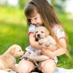 Puppy Fever Getting Your Family A Puppy