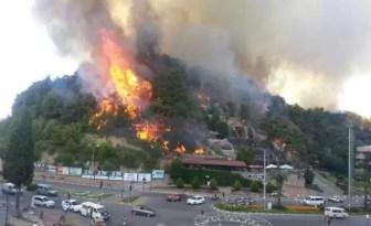 Manavgat'ta Çıkan Orman Yangını Korkuttu