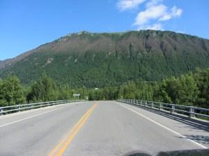 Defoliation at Peter's Creek exit on Glenn Highway