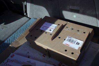 Box o chicks at the post office