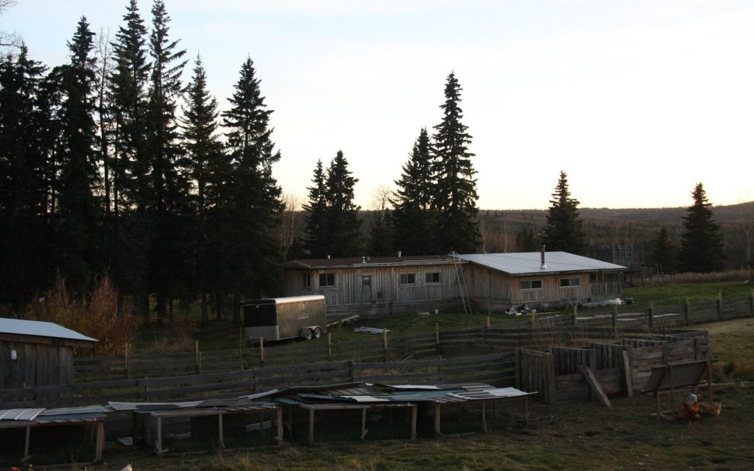 Mobile Home – New roof
