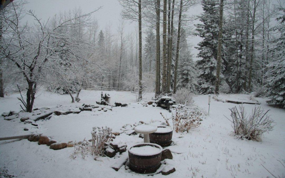 Snow – Last Thursday