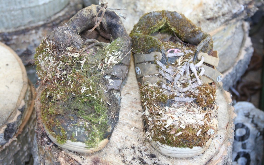 Shoes in forest