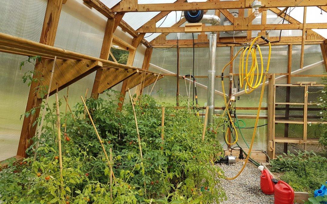 Hose in greenhouse