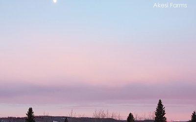 Sunrise – winter time