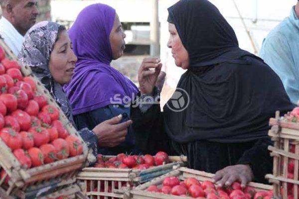 ارتفاع الخيار وتراجع الكوسة.. أسعار الخصر والفاكهة في سوق العبور اليوم