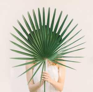Palm image