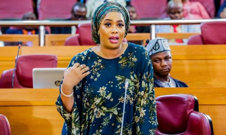 Mojisola Alli-Macaulay: Biography of Lagos Female lawmaker who said Nigerian youths Are High On Drugs All The Time