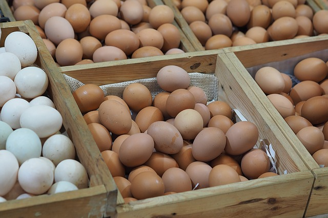 5 Easy Tricks To Preserve Your Food Without Refrigeration - How to store Eggs