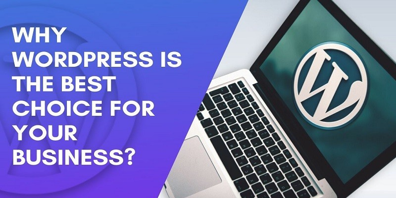 Why WordPress Site Is The Best Choice For Businesses