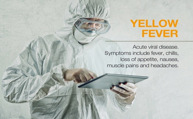 Yellow Fever Symptoms and Prevention Tips