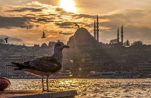 Tours por Turquía y Dubái desde Medellín y Bogotá