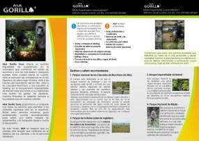 tri-fold_brochure_back