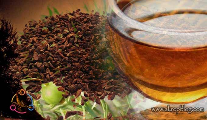Üzerlik Tohumu Nasıl İçilir? Çayı Nasıl Hazırlanır?
