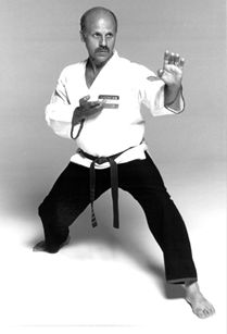 Image result for american karate