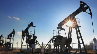 Photo of النفط يرتفع مع تراجع الدولار