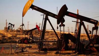 Photo of النفط يهبط نحو 2.5% بعد تقرير يتوقع زيادة إنتاج أوبك