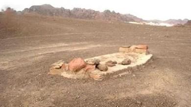 Photo of أم سعودية تطالب بنبش قبر ابنها المتوفي منذ عام لسبب غريب !