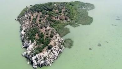 Photo of تركيا : جزيرة للبيع في مدينة بورصة ( فيديو )