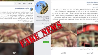 """Photo of The truth about selling """"donkeys meat"""" in Damascus .. """" Fake News """""""
