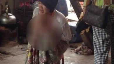 Photo of كمبوديا : مقتل طفلة بعد سقوطها في بركة تماسيح