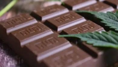 Photo of الإمارات : مستثمر يخفي المخدرات في الشوكولا و يدعي المرض