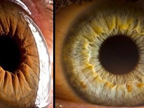 İnsan Gözüne Ait Harika Fotoğraflar