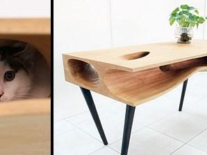 Kedi sahipleri için masa tasarımı