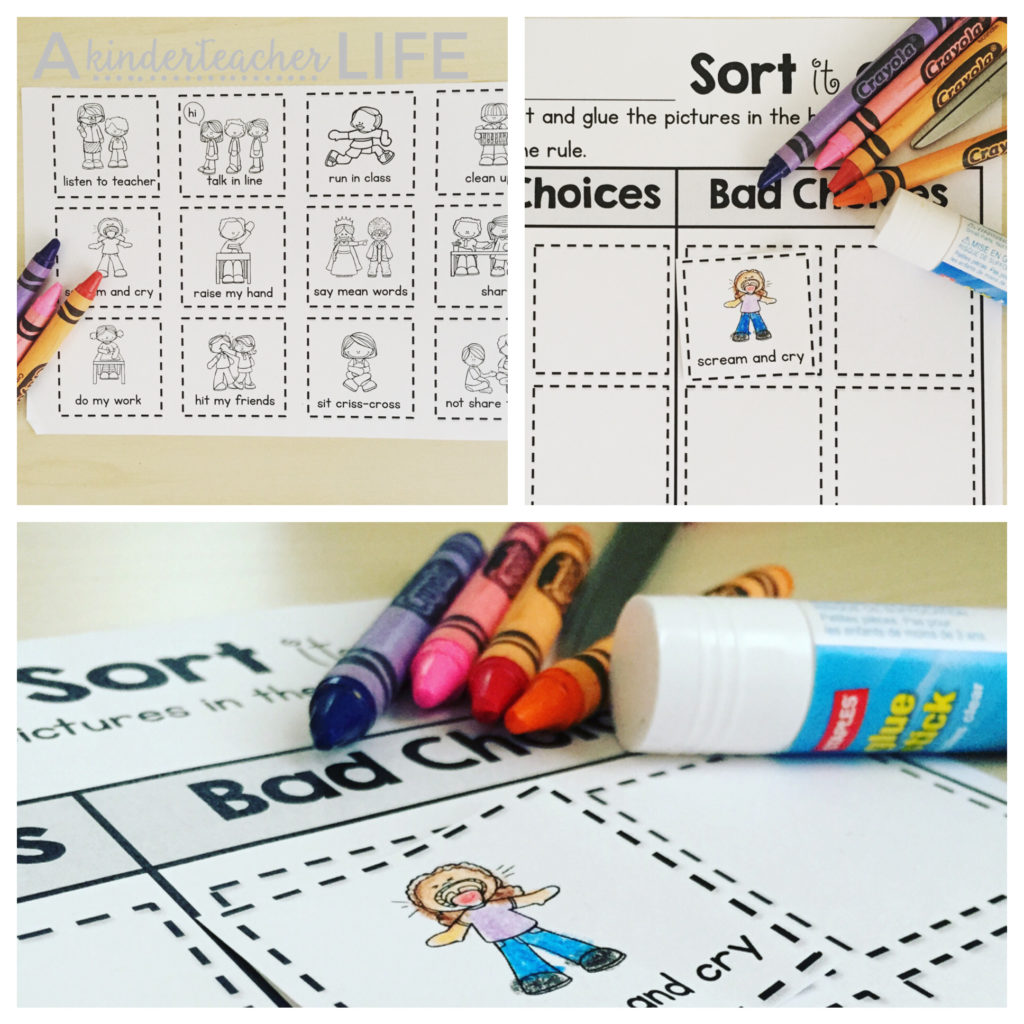 Sort Worksheets