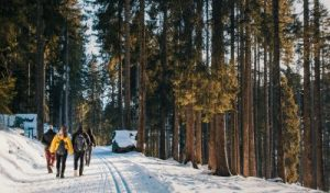 Neujahrs-Winterwanderung @ HoT