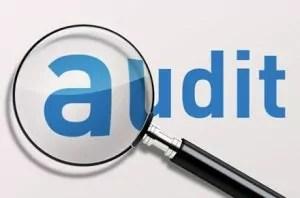 jenis jenis audit dan auditor